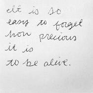 15083-Life-Is-Precious
