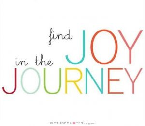 find-joy-in-the-journey-quote-1-1-300x260